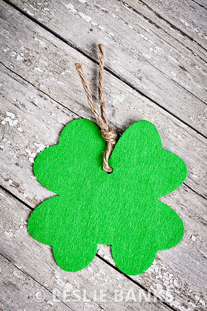 Shamrock on vintage table