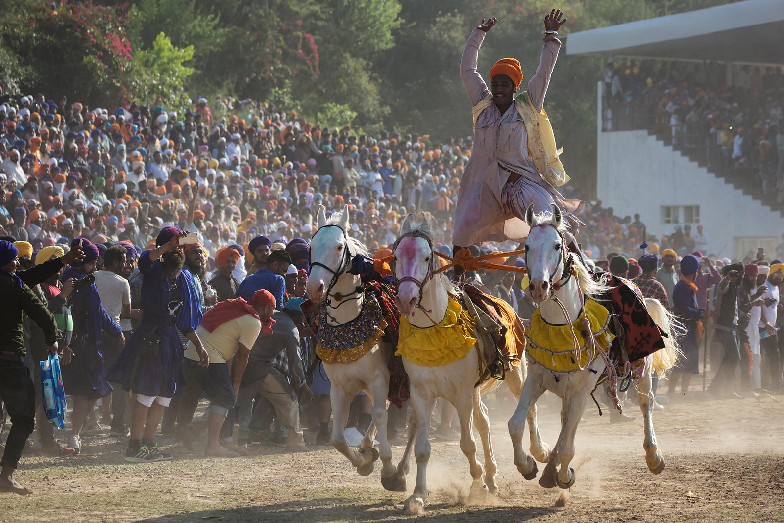 A Nihang Sikh Rides Three Horses at one Time During the Horse Games