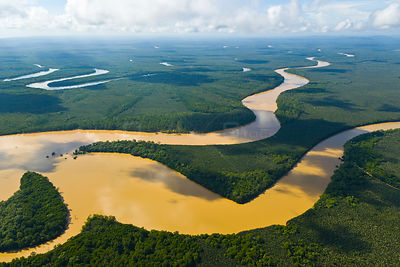 Aerial view of the River Kinabatangan and riverine tropical rainforest, Sabah, Malaysia, Borneo, Asia.