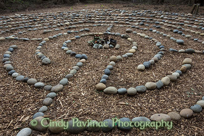 Forest Path Labyrinth
