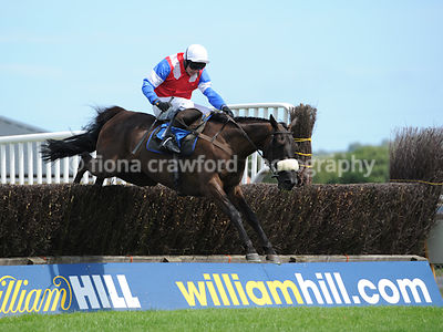 2.45pm Novices' Handicap Steeple Chase with winner De Faoithesdream