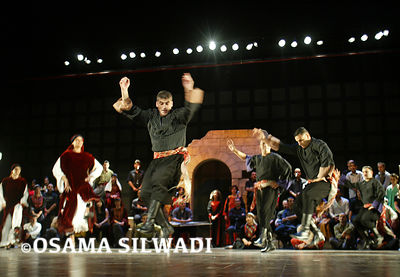 Sareyyet Ramallah Dance Company ..  First Ramallah Group