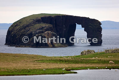 The islet of Dore Holm, its natural rock arch making it look like a horse drinking deeply, Esha Ness, Northmavine, Shetland