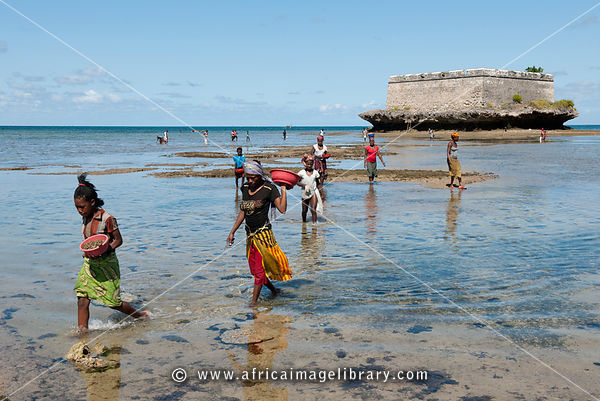 people looking for crustaceans next to the 17th century fort on Sao Laurenco island, Ilha do Mocambique, Mozambique