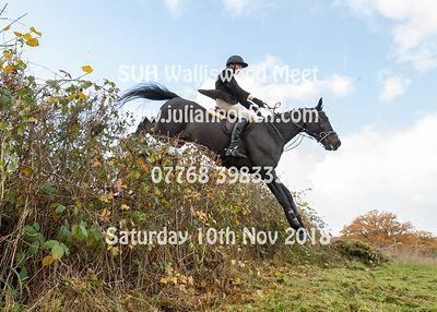 2018-11-10 SUH Walliswood Jumping Meet