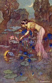 Sita finds Rama among Lotus Blooms by Warwick Goble