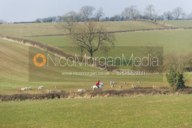 The Cottesmore hounds near Ladywood Covert