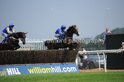 3.20pm Novices' Steeple Chase with winner Changing The Guard
