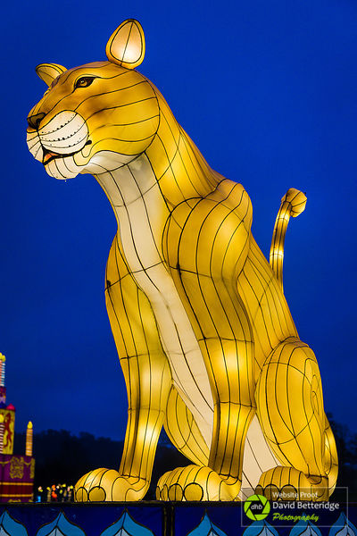 Longleat_Festival_of_Light-11