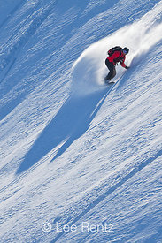 Snowboarder Carving Powder in Heather Meadows