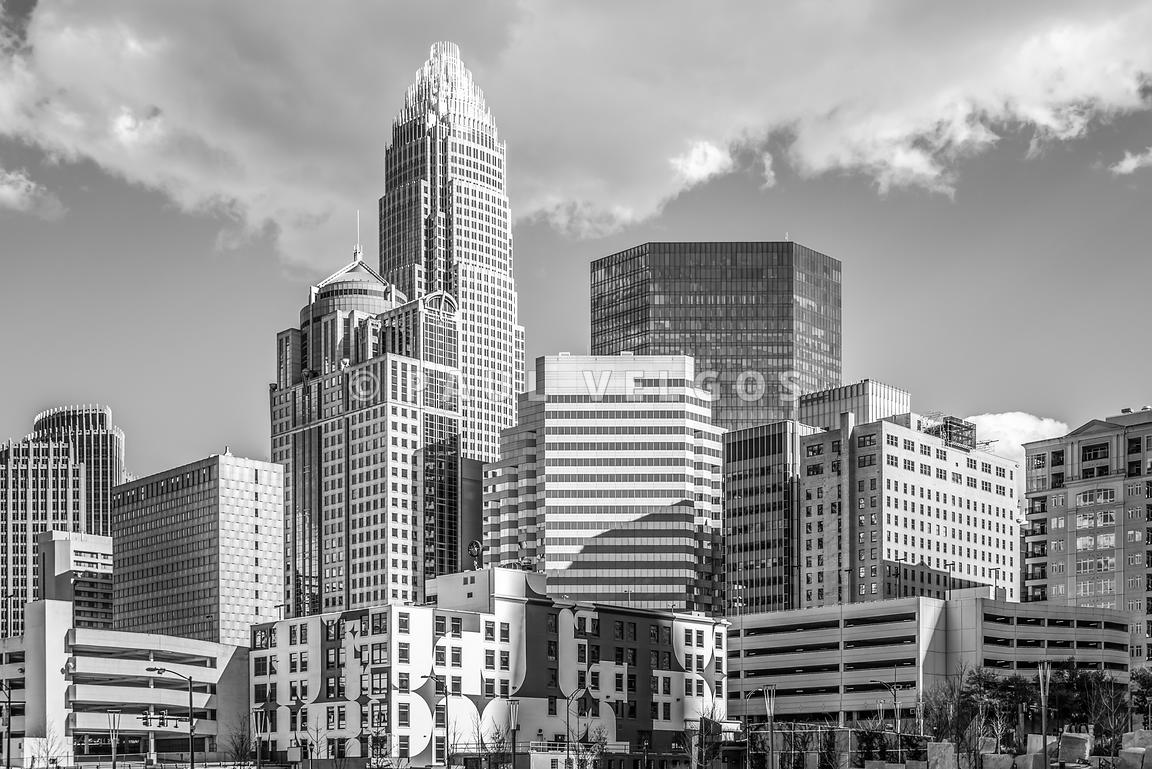 Charlotte Downtown Black and White Photo