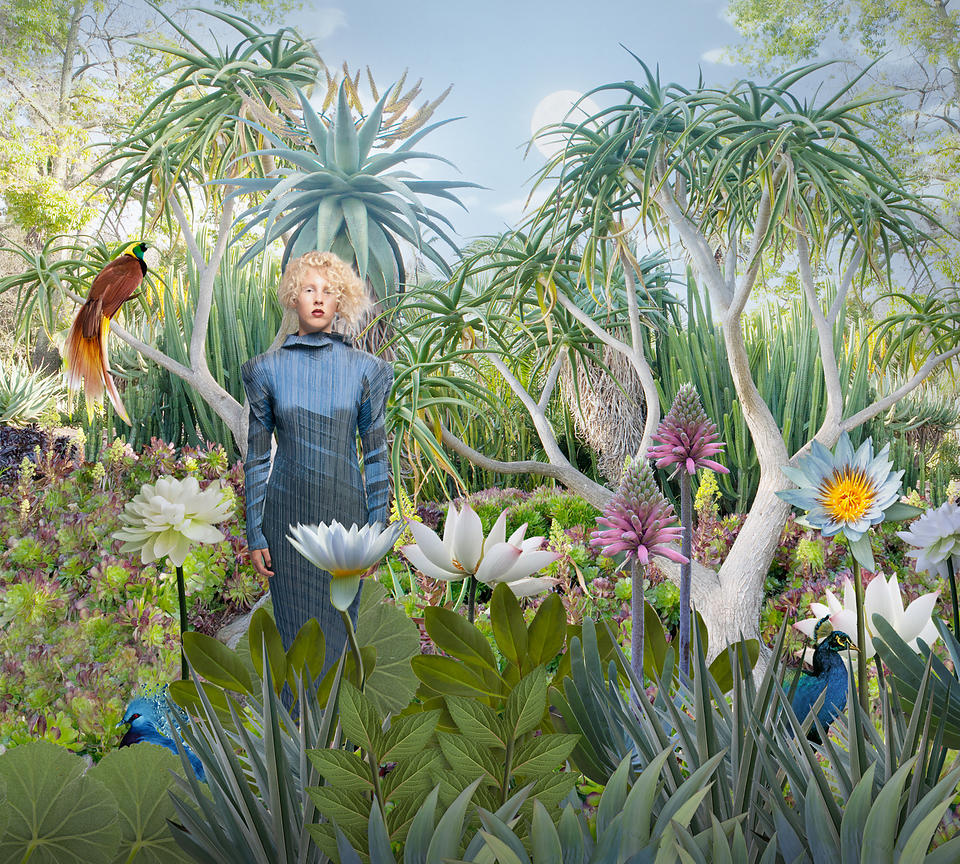 woman in garden with exotic birds