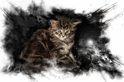Art-Digital-Alain-Thimmesch-Chat-12