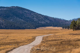 Gravel Road in Valles Caldera National Preserve