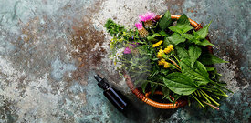 Meadow and Medicinal herbs and herbal tincture for clean eating biohackers paleo diet copy space