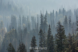Forest Fire Smoke in Canada's Glacier National Park
