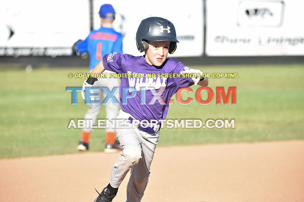 05-06-16_BB_LL_DIX_Farm_Wildcats_v_Gators_BR_547