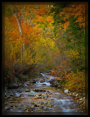 091016_FallStream_CF000440-Edit_PD
