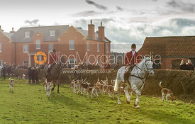Hounds leaving the Meet. The Belvoir Hunt at Sheepwash 29/12