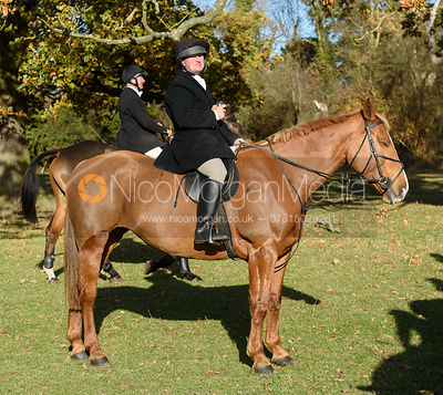 At the meet. The Belvoir Hunt at the Kennels 13/11