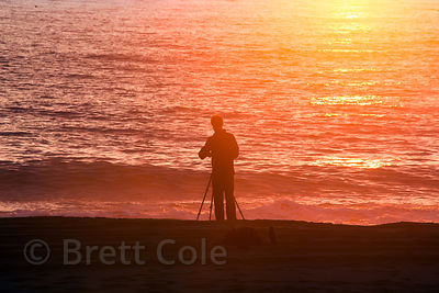 A photographer takes photos at sunset, Gold Beach, Prairie Creek Redwoods State Park, California
