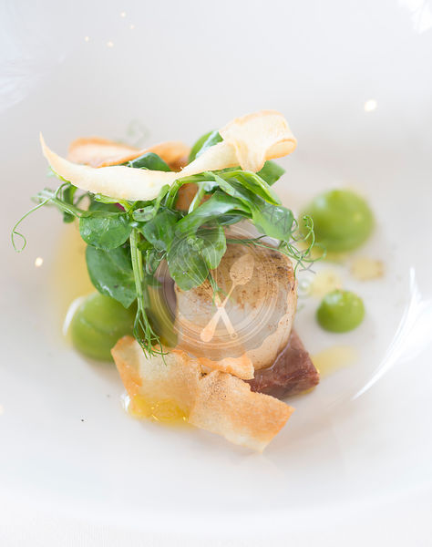 Pan Seared King Scallops with braised pigs cheek, garden pea puree and parsnip crisp.