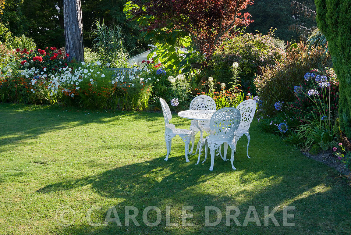 Table and chairs on the lawn surrounded by bright annuals and perennials including white cleomes, the spider flower, agapanth...