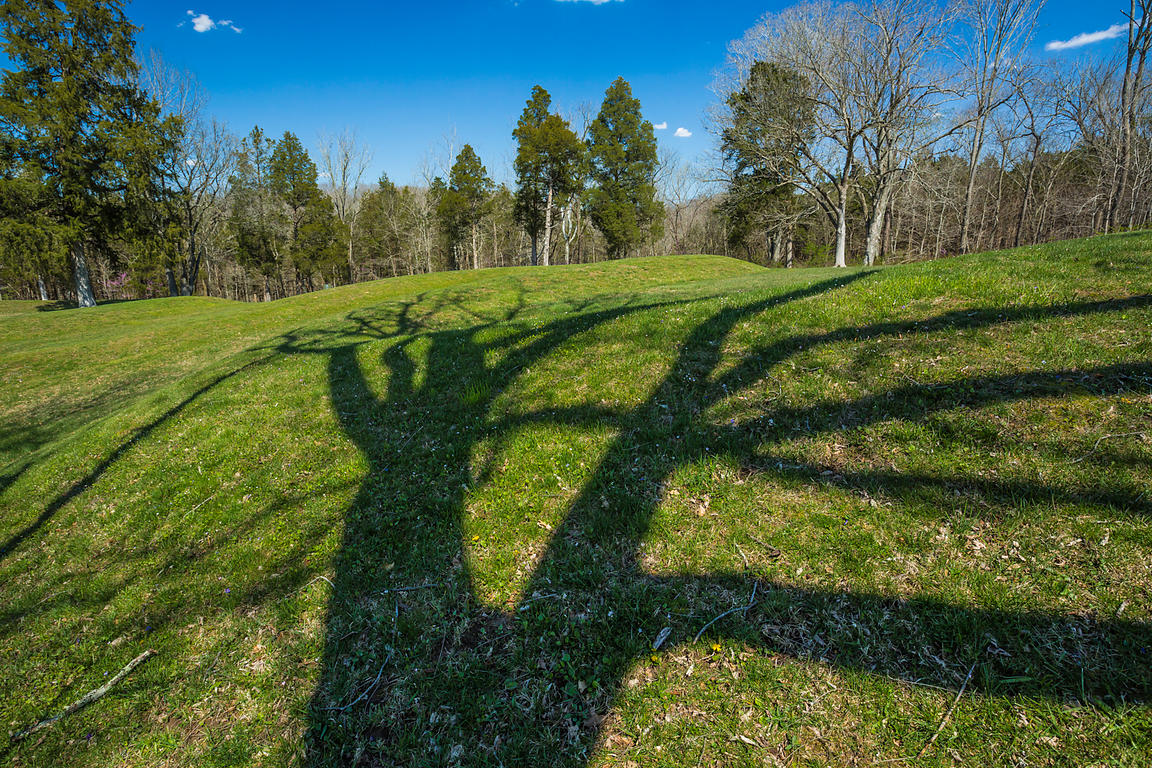 Spring Tree Shadows Crossing Great Serpent Mound