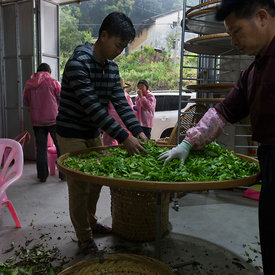 Lin Bu Gao buying tea
