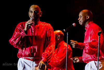 The Trammps, Citrus Heights, 2013