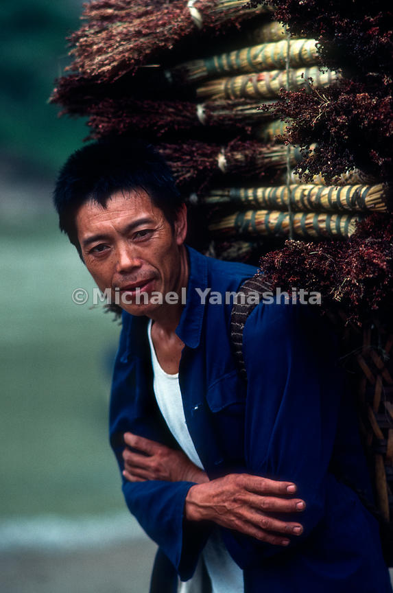 A man transports his harvest on his back. Ta Ping Do,.Guizhou, China.
