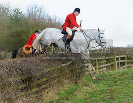 jumping a hedge with the The Belvoir Hounds at Ingarsby Hall 3/2
