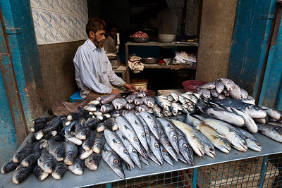 Muslim fish processors in Jodhpur, Rajasthan, India