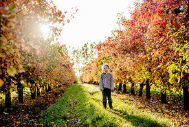 Younger Nordic girl standing in pear orchard