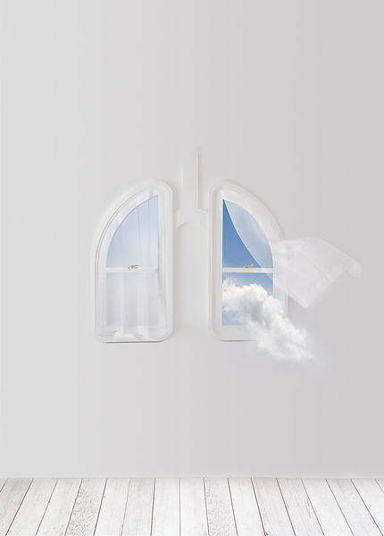 Lung_window_1243v21mrg