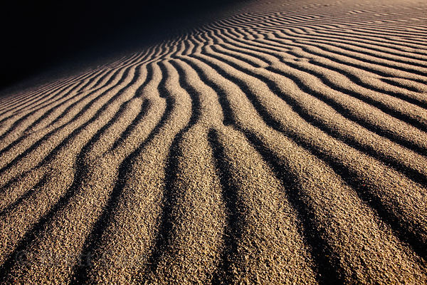 Patterns in sand dunes, Platboom, Cape Peninsula, South Africa