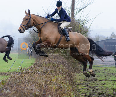 Annabel Bealby jumping a hedge at Town Park Farm