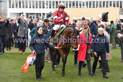 Tiger_Roll_winners_enclosure_13032019-4
