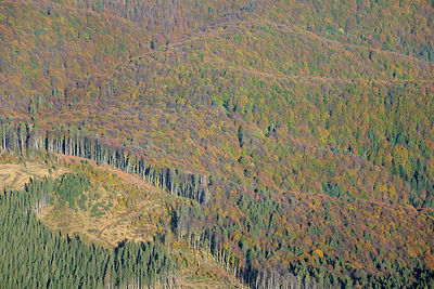 Aerial view of deforestation in the ?ureanu Mountains.A logging vehicle is visible. Carpathians, Romania. October, 2014.