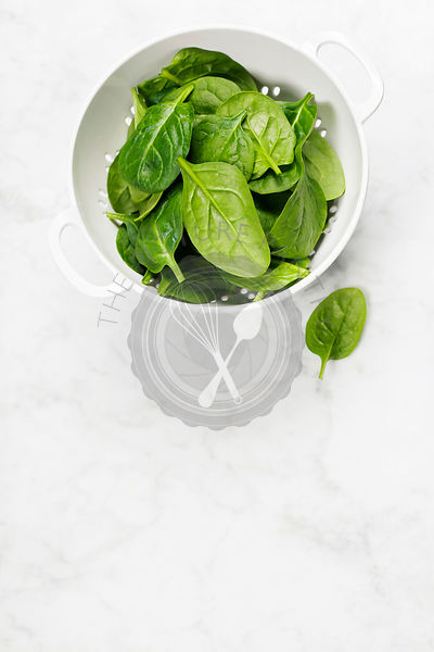 raw fresh spinach
