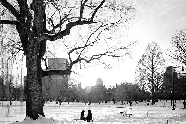 BOSTON PUBLIC GARDEN IN WINTER BLACK AND WHITE