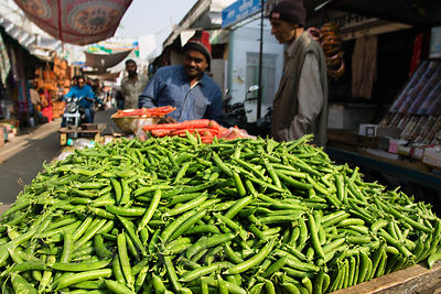 Mutter (peas) from nearby field for sale at a market in Pushkar, Rajasthan, India