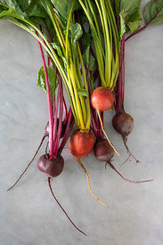 ACutting_beets_5152