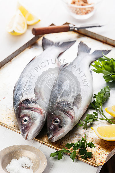 Raw fish sea bass with herbs and lemon on textured background
