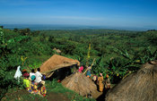 Bagisu village on the footslopes of Mount Elgon, Mbale, Uganda