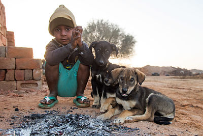 A boy sits with three street dog puppies next to a fire on a cold winter morning, Chachiyawas village, Rajasthan, India