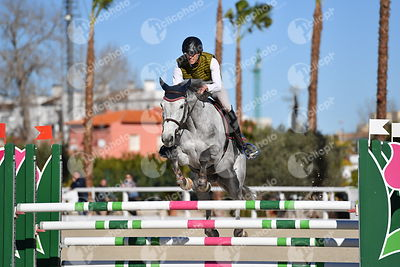 Oliva, Spain - 2018 January 16: 6 years old 1m25 during CSI Mediterranean Equestrian Tour 1..(photo: 1clicphoto.com I Nicole ...