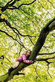 Younger Nordic girl in a tree