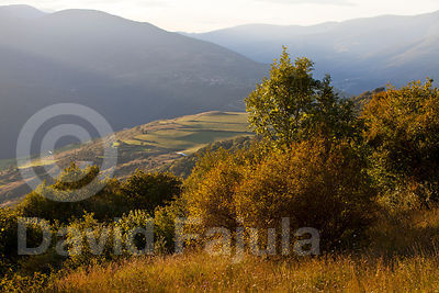 Autumn light at Coll de Jou
