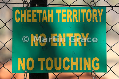 Cheetah (Acinonyx jubatus) territory sign, De Wildt Cheetah Centre, Republic of South Africa